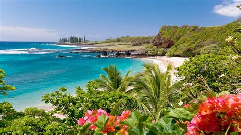 Hamoa Beach, Maui, Hawaii Wallpaper Widescreen Hd