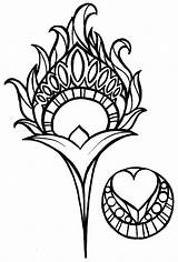 Peacock Feather Nouveau Tattoo Coloring Drawing Feathers Metacharis Tattoos Clip Deviantart Henna Simple Clipart Flowers Deco Vector Mosaic Library Inspiration sketch template