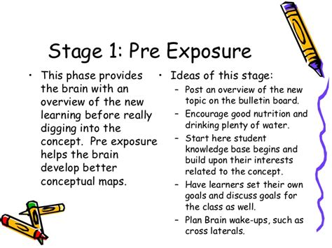 Brain Based Lesson Plan Template by The 7 Stage Brain Based Learning Lesson Planning
