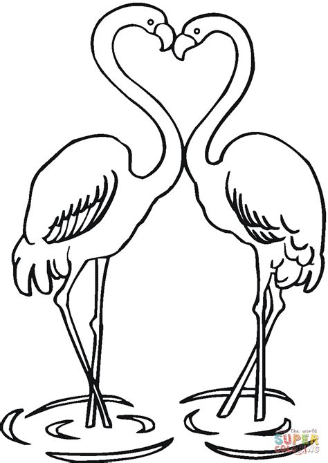 flamingo coloring page of flamingo coloring page free printable coloring