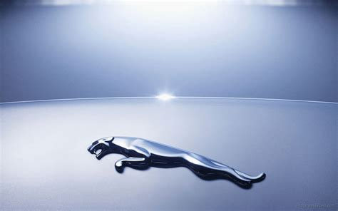 Jaguar, an automobile company owned tata is a huge brand. Jaguar Logo 2 Wallpaper | HD Car Wallpapers | ID #1018