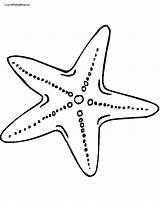 Starfish Coloring Pages Cartoon Printable Fish Star Getcoloringpages Ocean sketch template