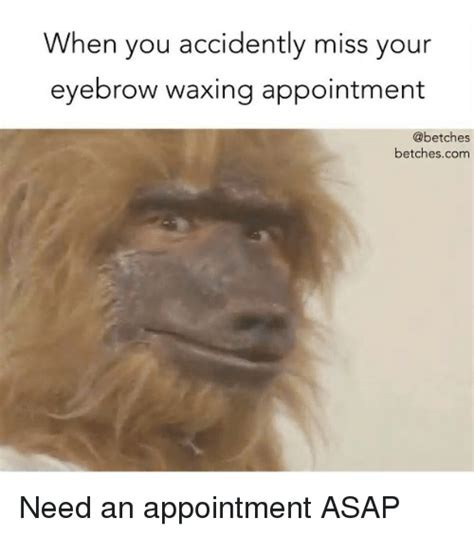 Waxing Meme - when you accidently miss your eyebrow waxing appointment betchescom need an appointment asap