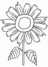 Sunflower Coloring Pages Clipart Sheets Drawing Sunny Smile Little Printable Sunflowers Sheet Adults Flowers Forkids Colorings Cloring Colored Getcolorings Print sketch template