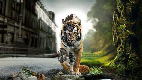 fantasy art tiger animals wallpapers hd desktop