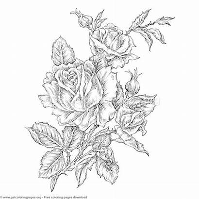Coloring Pages Grayscale Exotic Flower Getcoloringpages