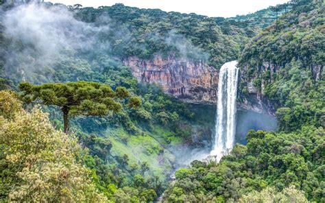 rainforest waterfall wallpaper high resolution