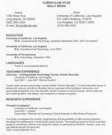Curriculum Vitae Formats by Curriculum Vitae Sles Curriculum Vitae Sles Doc