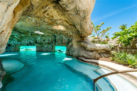 amazing pools  swimming    level