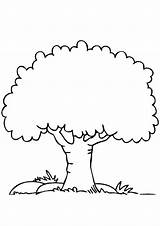Coloring Tree Trees Pages Simple Apple Drawing Worksheets Arvore Para Colorir Printable Preschoolers Momjunction Desenhos Parentune Story sketch template