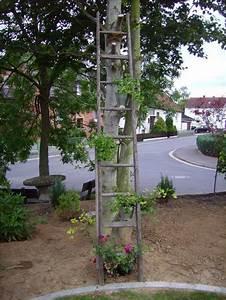 Holzleiter Deko Garten : blumenleiter alte leiter jetzt habe ich auch endlich eine page 2 mein sch ner garten forum ~ Sanjose-hotels-ca.com Haus und Dekorationen