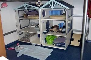 Arbre à Chat Fait Maison : cage furet fait maison ventana blog ~ Melissatoandfro.com Idées de Décoration
