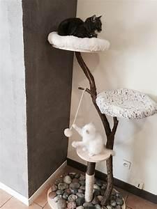 Arbre À Chat Pour Gros Chat : arbre chat diy pour les radins comme moi passiparisienne ~ Nature-et-papiers.com Idées de Décoration