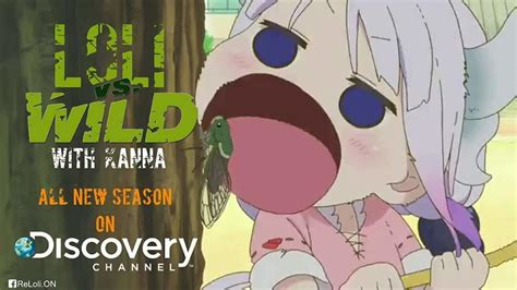 Kanna Memes - loli vs wild with kanna miss kobayashi s dragon maid know your meme