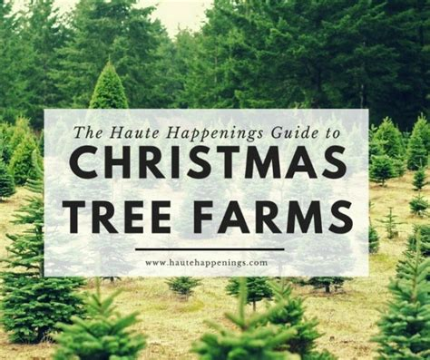 christmas tree farm redland oregon where to find a tree farm in the wabash valley
