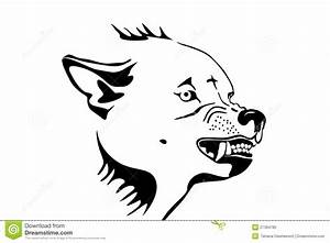Wolf Head Royalty Free Stock Photo - Image: 21364785