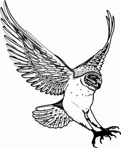 Barn Owl Flying Clip Art Black and White – Cliparts