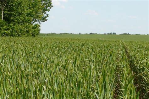 chambre d agriculture ni re quelles aides pour l agriculture biologique en 2017
