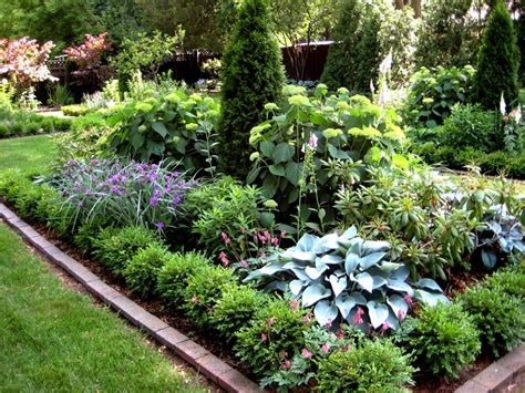 border plants shade 1000 images about gardening in the shade on pinterest gardens border plants and shade plants