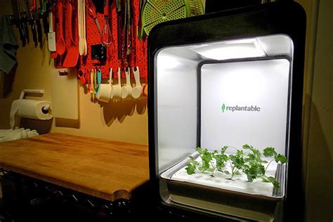 Indoor Farm Boxes Promise Little Work and Lots of Fresh
