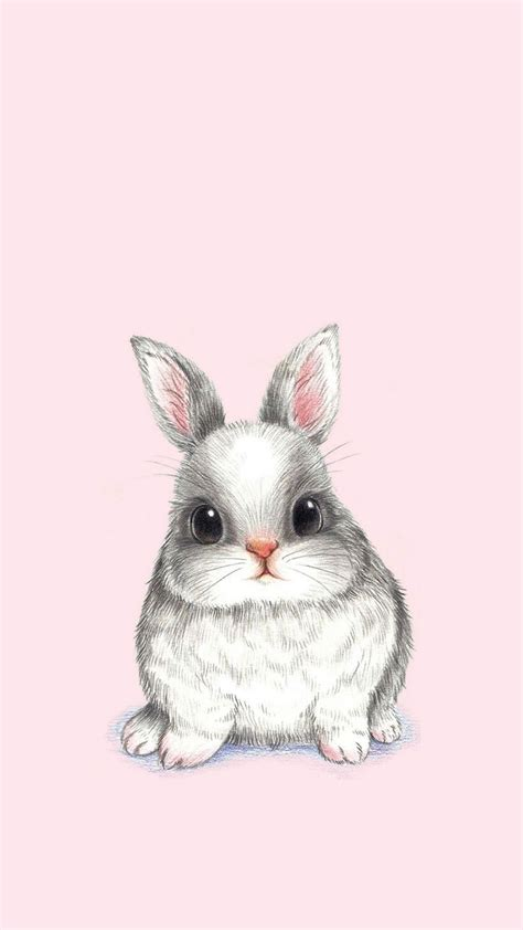 Animated Easter Bunny Wallpaper - bunny rabbit phone wallpaper rabbit conejo lapin kani