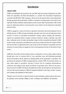 terrorism a threat to the world essay
