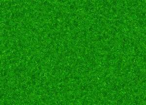 Lush Green Grass Hi Res Texture Wallpapers Pattern