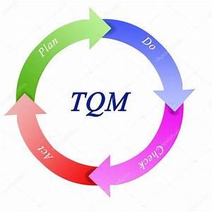 Tqm Diagram  U2014 Stock Photo  U00a9 Vaeenma  30944407