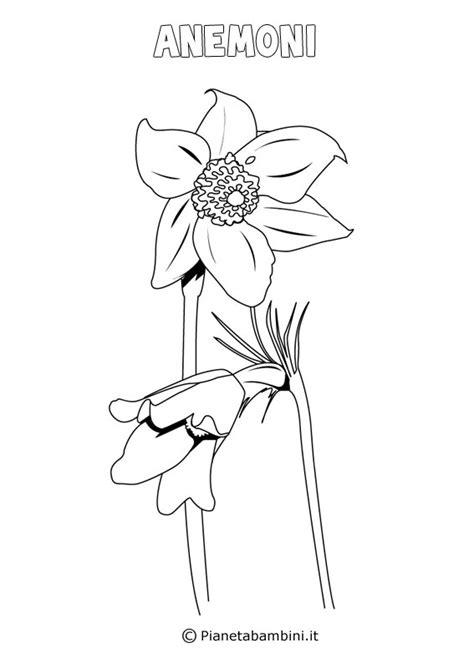 disegni  fiori  primavera da stampare  colorare