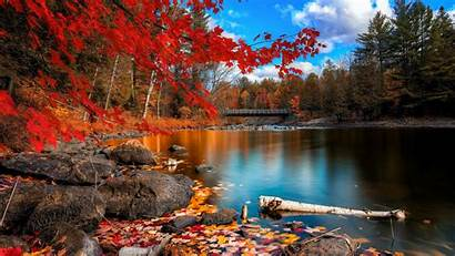 Fall Foliage Wallpapers Autumn Nature Leaves 4k