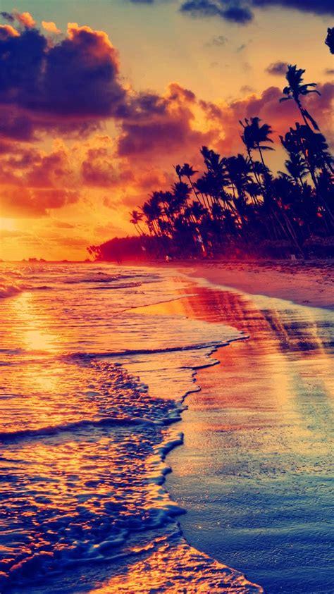 golden beach sunset tropical iphone  wallpaper hd