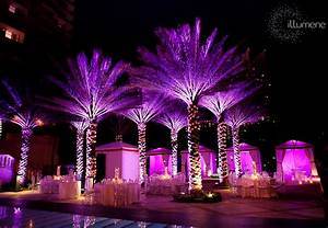 Outdoor lighting for Wedding video lighting