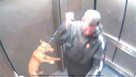 MP Adam Marshall unveils revamped animal cruelty ...