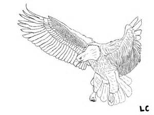 Line Drawing of Bald Eagle Flying