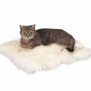 Tapis Pour Chat : coussin tapis pour chat coussin tapis chat coussin pour chat tapis pour chat ~ Teatrodelosmanantiales.com Idées de Décoration