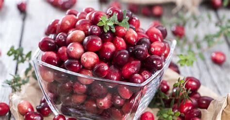 Cranberry, Großfrüchtige Moosbeere  Mein Schöner Garten