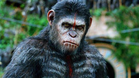 reinventing  reel dawn   planet   apes