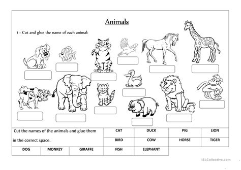 animals label  classify english esl worksheets