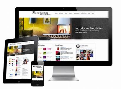 Marketing Digital Responsive Website Web Example Designs
