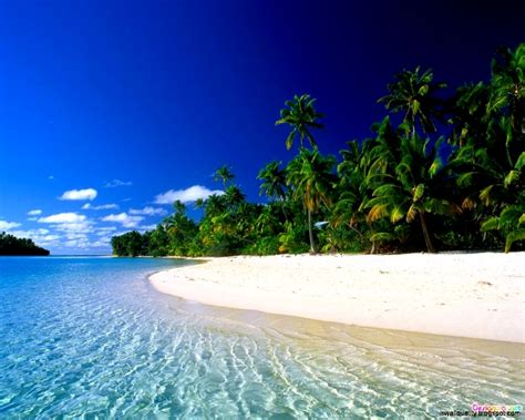 tropical beach wallpaper wallpapers quality