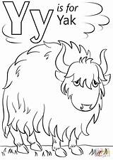 Letter Coloring Yak Pages Printable Alphabet Cartoon Crafts Preschool Outline Super Pluspng Sheets Supercoloring Letters Template Dot Yeti Animals Print sketch template
