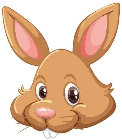 Xinon 298.705 views2 year ago. Bunny face on white background - Download Free Vectors ...