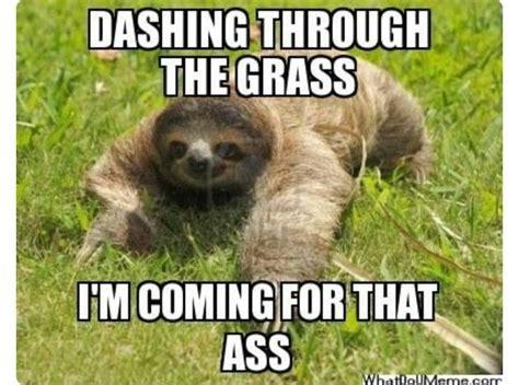 Sloth Asthma Meme - pin af britani santos p 229 meme responses pinterest