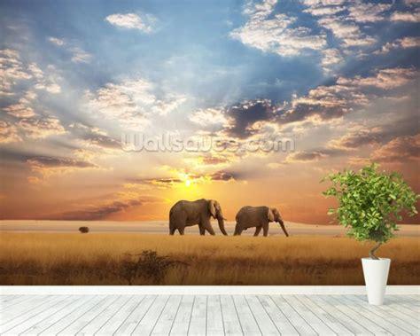 elephant wallpaper wall mural wallsauce uk