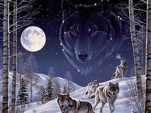 wallpapers: Vision Of The Wolf Wallpapers