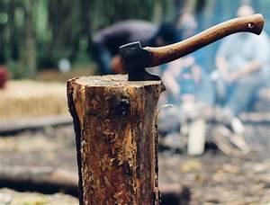 Tuer Un Arbre Avec De L Acide : magazine arboricole l 39 intendance de la cr ation arboplus ~ Dailycaller-alerts.com Idées de Décoration
