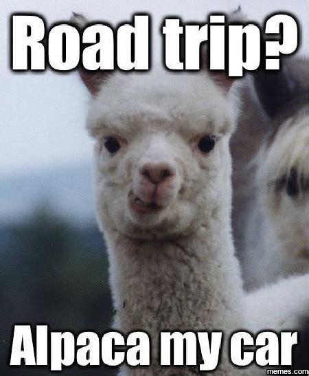 Road Trip Memes - home memes com