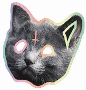 odd future cat | Tumblr