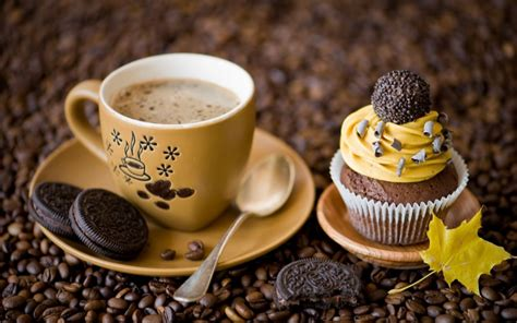 Delicious Coffee And Sweet Dessert With Oreo Biscuits Bonavita Coffee Maker Bv1500ts Turns Off 5-cup With Double-wall Thermal Carafe Barista Where To Buy Cold Brew In A Can Blinking Light Austin Canada