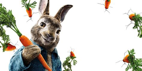 wallpaper peter rabbit animation   movies